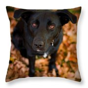 Autumn Dog Throw Pillow