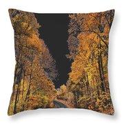 Autumn Drive 2 Throw Pillow