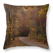 Autumn Drive Throw Pillow