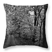 Autumn Drive Bnw Throw Pillow