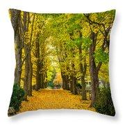 Autumn Entrance 2 Throw Pillow