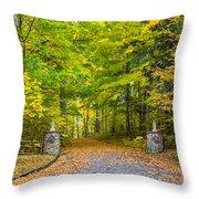 Autumn Entrance 3 Throw Pillow
