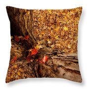 Autumn Fall  Dream Throw Pillow