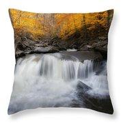 Autumn Falling Square Throw Pillow