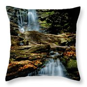 Autumn Falls - 2885 Throw Pillow
