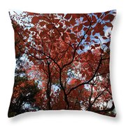 Autumn Fan Throw Pillow