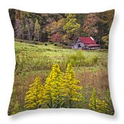 Autumn Fields Throw Pillow