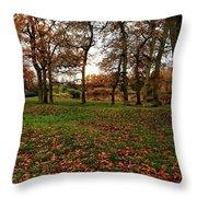 Autumn Fields, Throw Pillow