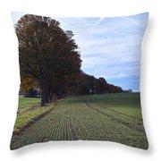 Autumn Fields, Syke, Germany Throw Pillow