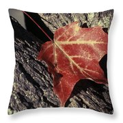 Autumn Find Throw Pillow