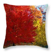 Autumn Fire  In  Red  And  Gold Throw Pillow