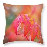 Autumn Fires Throw Pillow