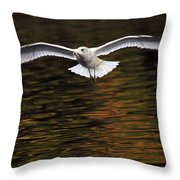 Autumn Flight Throw Pillow
