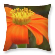 Delicate Flow, Oh, Oh, Oh Throw Pillow