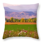 Autumn Flowers At Harvest Time Throw Pillow