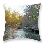 Autumn Flows Toward Winter Throw Pillow
