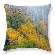 Autumn Fog And Snow Throw Pillow