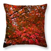 Autumn Foliage-1 Throw Pillow