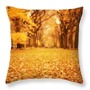 Autumn Foliage - Central Park - New York City Throw Pillow by Vivienne Gucwa