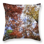 Autumn Forest Canopy Throw Pillow