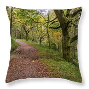 Autumn Forest Path - Throw Pillow