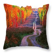 Autumn Forest Track Throw Pillow
