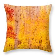 Autumn Forest Wbirch Trees Canada Throw Pillow