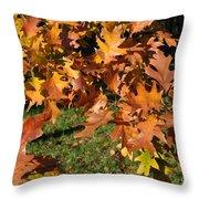 Autumn Fragrance Throw Pillow