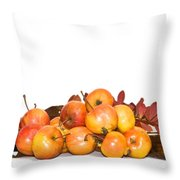 Autumn Friuts And Leaves Throw Pillow