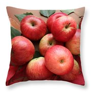 Autumn Gifts. Throw Pillow