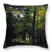 Autumn Glen Throw Pillow