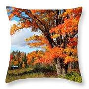 Autumn Glory Throw Pillow by Gigi Dequanne