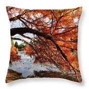 Autumn Glow Throw Pillow by Nicola Butt