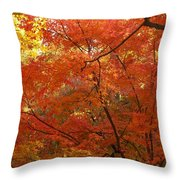 Autumn Gold Poster Throw Pillow