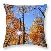 Autumn Gold Sunburst Throw Pillow