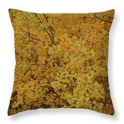 Autumn Gold Throw Pillow