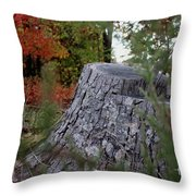 Autumn Gone-by Throw Pillow