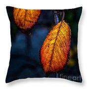 Autumn Gradation Throw Pillow