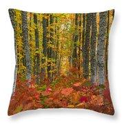 Autumn Grove Throw Pillow