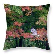 Autumn Hawk Square Throw Pillow