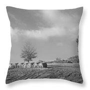 Autumn Hay Bw Throw Pillow