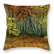 Autumn Hollow Throw Pillow