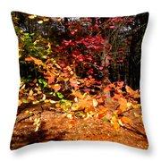 Autumn Hues Throw Pillow
