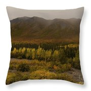 Autumn In August Brooks Range Alaska Throw Pillow