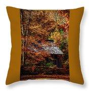 Autumn In Cades Cove Smnp Throw Pillow