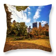 Autumn In Central Park Throw Pillow