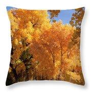Autumn In Curtin Throw Pillow