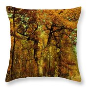 Autumn In Forest Throw Pillow
