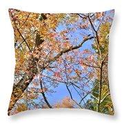 Autumn In Full Swing Throw Pillow