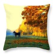 Autumn In Kathrines Way Throw Pillow